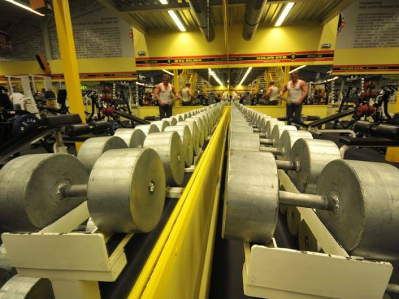 Gold's Gym interier IV